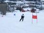 Skiweekend Geilo 24.-26. februar 2012