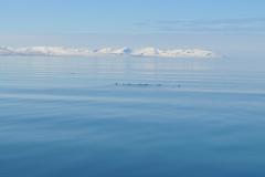 Svalbard 2009 076