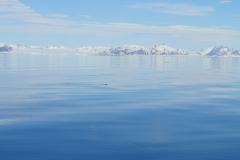 Svalbard 2009 084